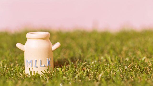 牧草とミルク缶